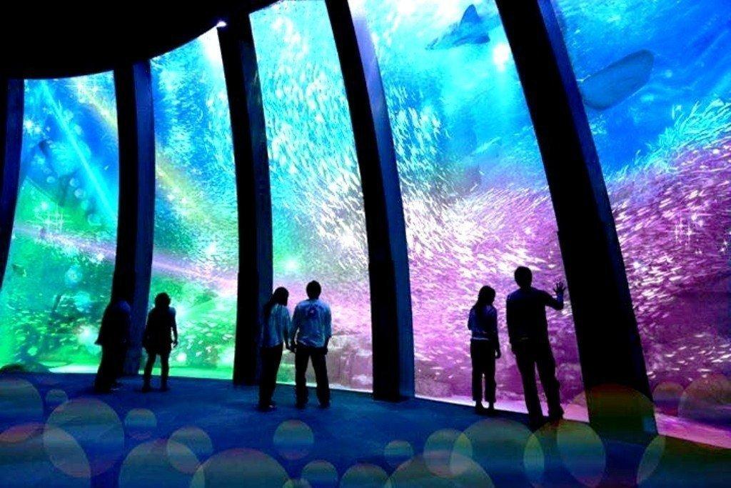 Re-think黃之揚,讀本海洋好書植入環保DNA