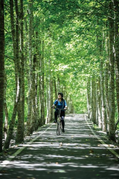 大農大富平地森林有完善的自行車道,騎行在樹蔭裡, 涼爽舒適,怡然自得。(莊坤儒攝)