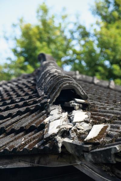 縣定三級古蹟將軍府的斑駁屋瓦,有種殘缺的美感,日後將修復成京都風情的巷道。