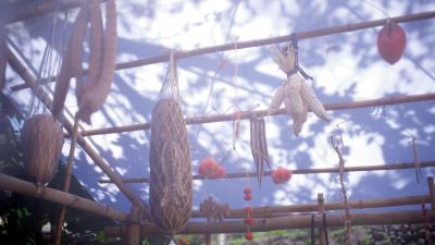 「有種棲息所」搭建一座意義轉化過的穀倉,供人與種子共處以感受共同的生命時間,再牽續人與作物與自然的關係。(種子野台提供)