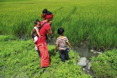 把種子和種子的故事傳續給下一代,在生活中保種,在日常裡實踐。