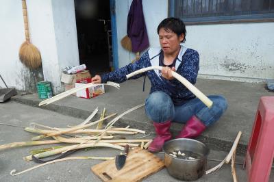 蘇秀蓮摘取野生藤心,經過處理後,成為台北餐廳菜單裡的珍饈。