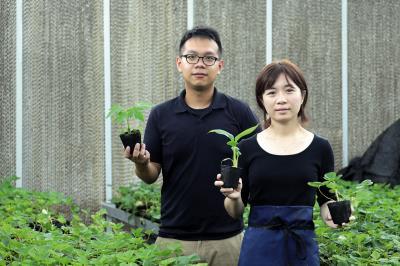楊佳慈與學弟張恭豪創立了帝霖公司,將抗病種苗的科研成果商品化、產業化。