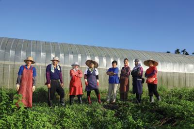 邦查農場為部落的婦女與族人提供了就業機會。(林格立攝)