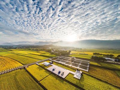 池上稻田是居民維繫生存、聯絡情感的地方,也是池上的文化底蘊、藝術創作的根源。(台灣好基金會提供,蕭安順攝)