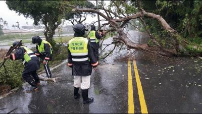 狂風暴雨,路樹倒塌,不靠外援,自主防災隊前往救災搶通。 (梅洲社區水患自主防災隊提供)