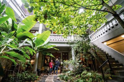 迪化街的三進街屋,每一進都別有洞天,老屋的中井天庭經過設計,更添綠意。(林旻萱攝)