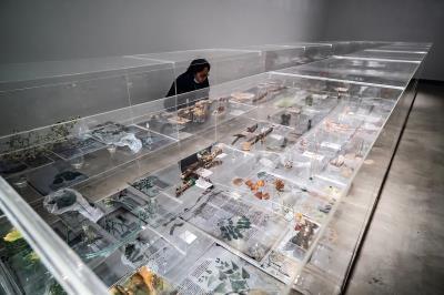 藝術家珍奈特•勞倫斯以植物、標本等素材,打造出沉浸式場景,闡釋人與自然之間的關聯。