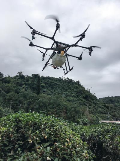 翔探科技開發的AG1-O無人機替 宜蘭正福茶園噴灑營養劑,大幅提升 茶葉品質,降低傳統農業的人力成本。(翔探科技提供)