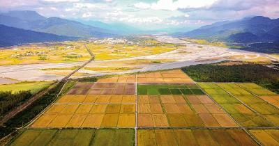 曾國旗透過合作社擴張有機農業的版圖,成就全國最大的有機雜糧暨水稻種植專區。(東豐拾穗農場提供)